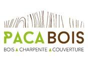 Logo PACAbois
